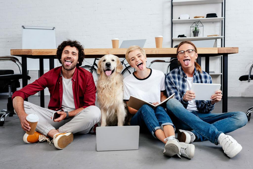 Hunde_op_versicherung_balunos